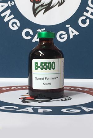 B-5500