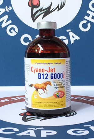 Cyano-Jet B12 6000